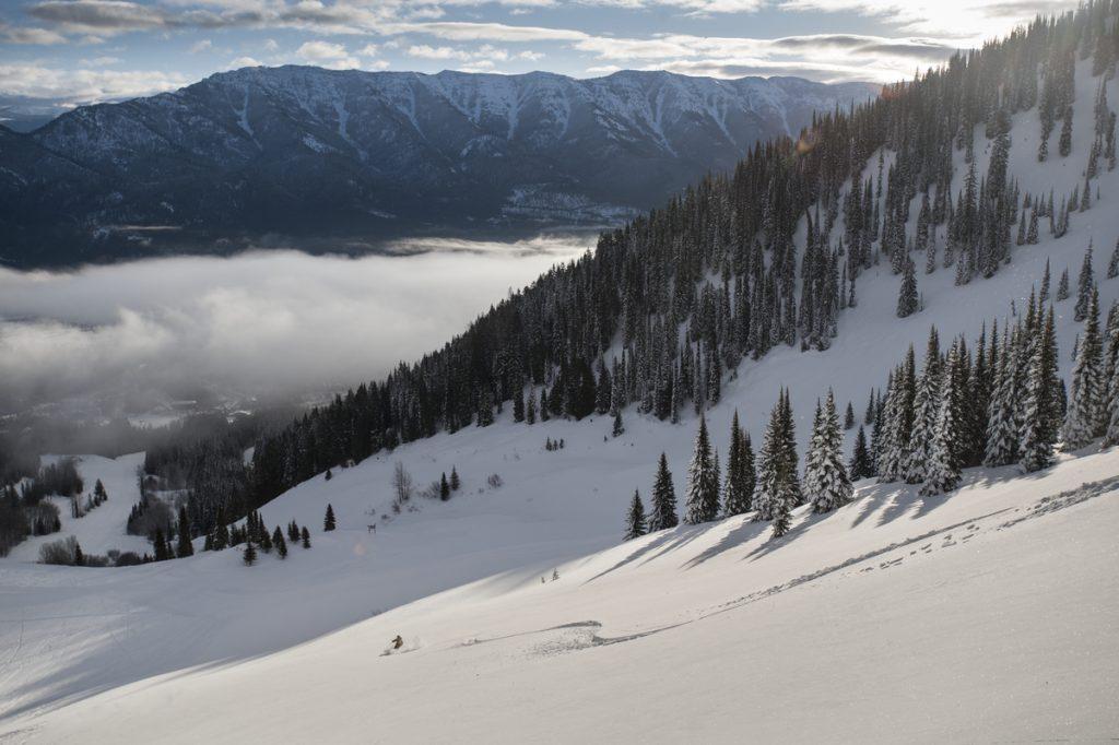 Fernie Alpine Resort ski trail